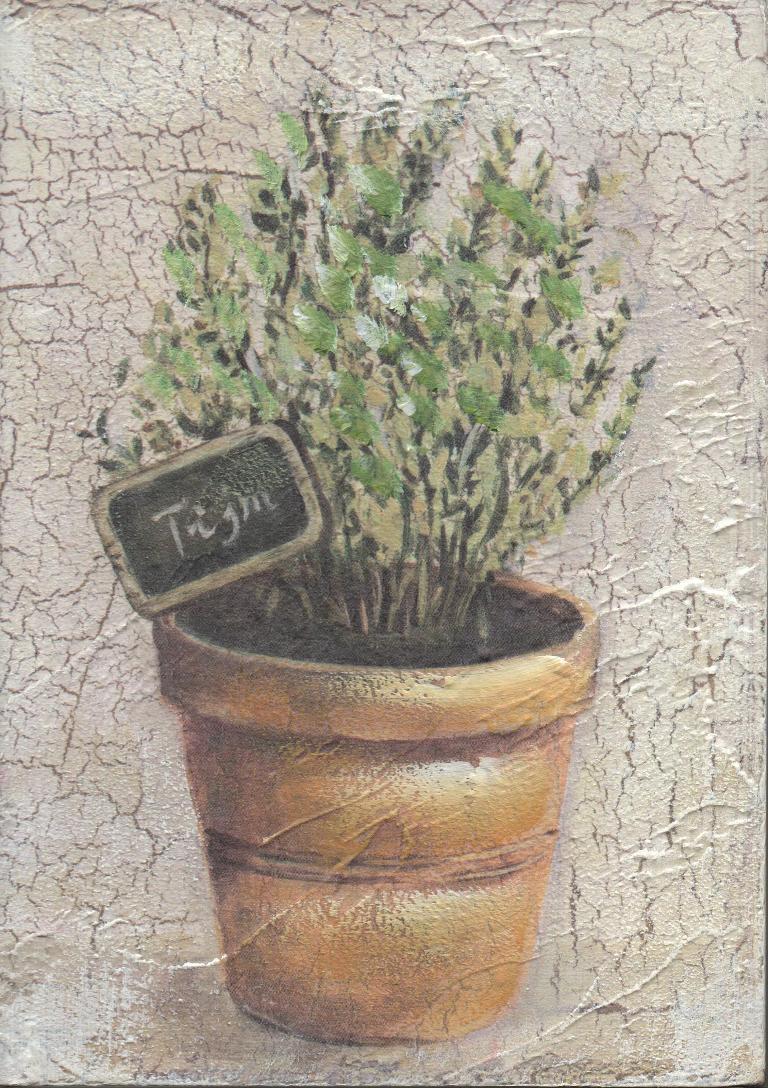 Quadro erbe timo 12x17cm 32910 idea luce di filippi for Erbe aromatiche in vaso