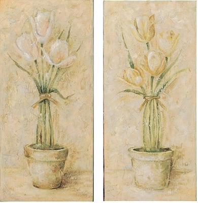 Coppia quadri con tulipani bianchi 20x30 COLORI E LUCI 37687 Idea ...